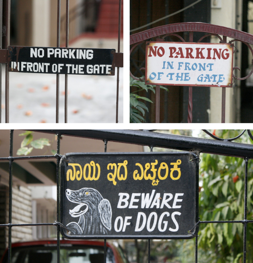 Parking-Dogs