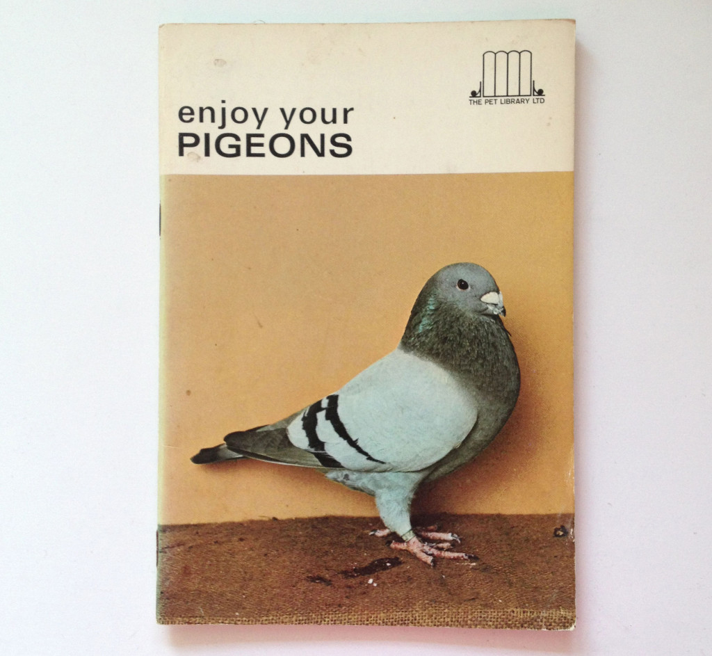 Enjoy your pigeons, 1969.