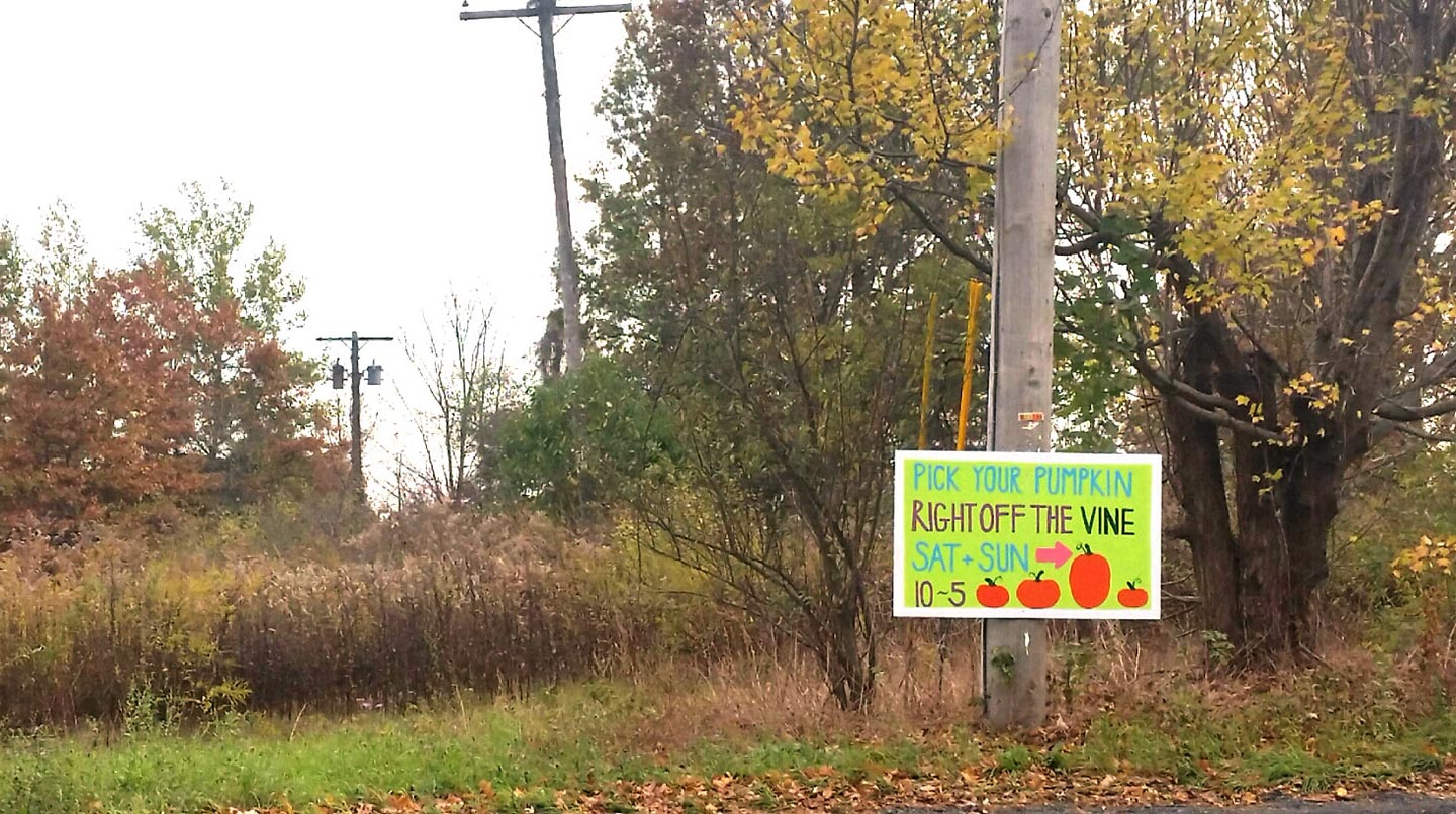 Arrow also pointing to the right. Well played, nameless pumpkin patch. Well played.