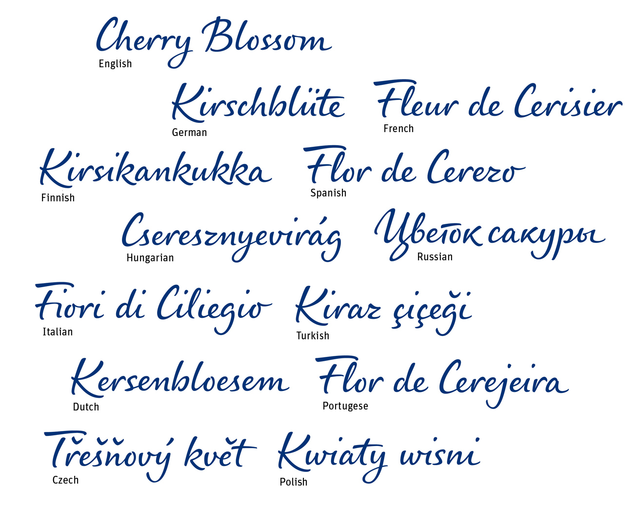 Branding and the psychology of handwriting the new nivea care type figure 12 care type is in use in most european languages m4hsunfo
