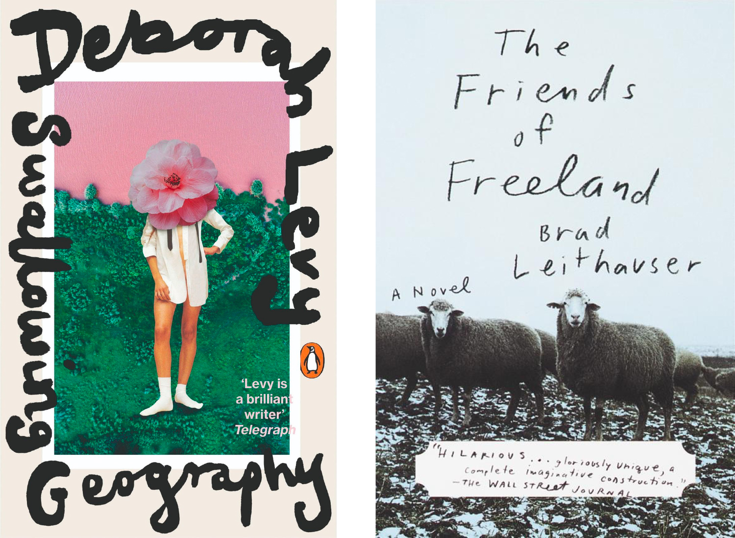 Swallowing Geography and The Friends of Freeland covers
